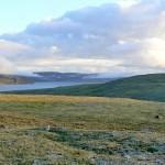 tundra-victoria-island