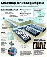 plan de la réserve de graines du svlabard